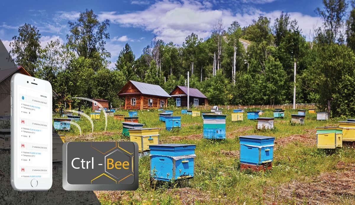 Antifurto per alveari: scopri come funziona Ctrl-Bee